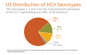 Hep C genotype 1 in the USA